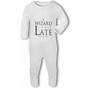 A Wizard is Never Late funny nerdy – Baby Romper Suit